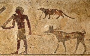 Hunter with dog and mongoose, egypt-tombs-animals