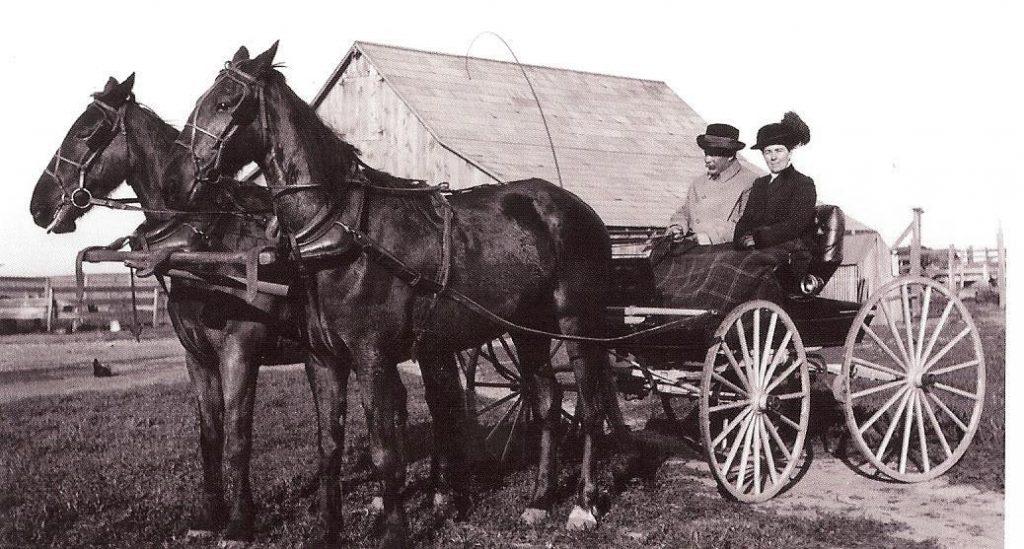 Paarden in het verleden